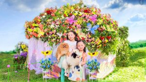 Pretend Playing House and Pet Wedding