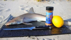 Catch and Cook BABY SHARK on the Beach!