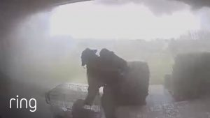 Pets Rescued From House Fire Seen Via Ring Doorbell & Stickup Cam   Ring TV
