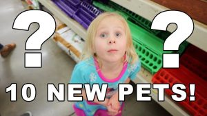 10 NEW PETS!!! WHAT WILL THEY BE???